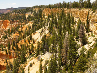 bryce canyon, farview point 2