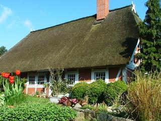 reetdachhaus mit steingarten