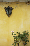 background of grunge wall, bush and lamp poster