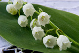 spring flower a lily of the valley poster