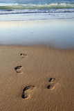 early morning footprints poster
