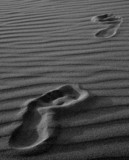 step marks in the sand poster