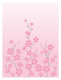 cherry blossoms - vertical poster