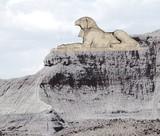 gray rock falcon poster