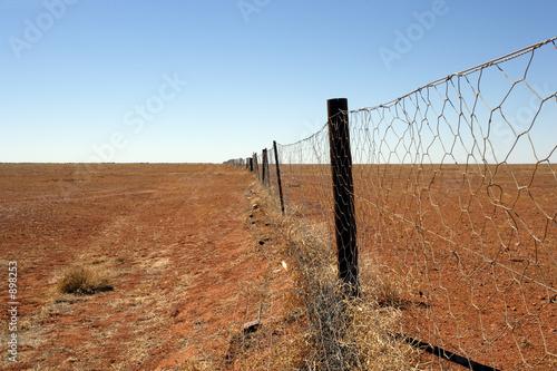 Leinwandbild Motiv australian outback dingo fence