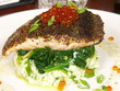 mustard seed crusted salmon