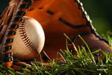 baseball and glove closeup poster