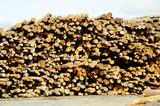 lumber processing 2 poster