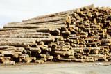 lumber processing 3 poster