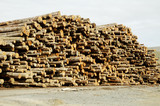 lumber processing 4 poster