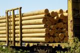 wood poles 1 poster