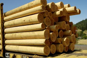 wood poles 2