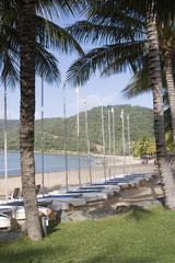 sailboats line hamilton island beach