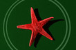 red star - 933290