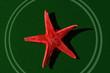 Leinwandbild Motiv red star