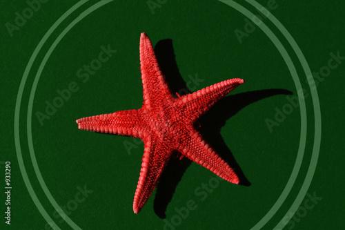 red star - 933290