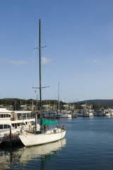 a sailboat in hamilton island marina