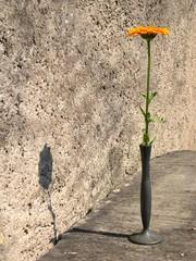 fleur en vase