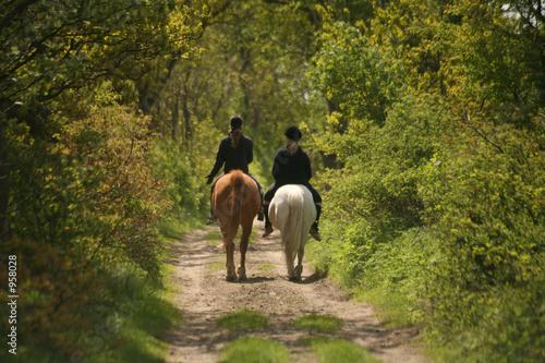 Fotobehang Paardrijden ausritt