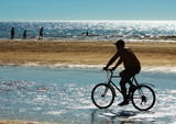mountain biker on the beach poster
