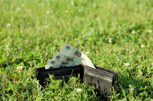 wallet with cash at grass