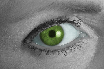 green eye looking at you