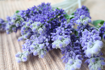 lavender on table mat
