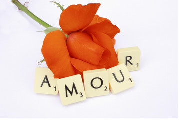 amour rose
