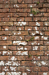 old weathered red brick wall