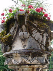 garden-vase