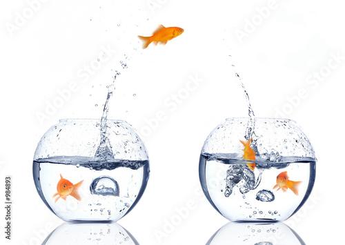 Leinwandbild Motiv splash!!!