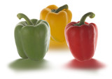 peppers in different colors poster