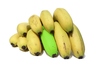 stand out - stand out banana of the bunch