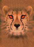 enhanced cheetah poster