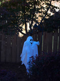 halloween yard ghost poster