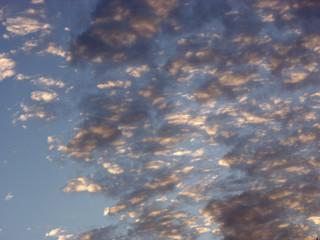 alto cumulus