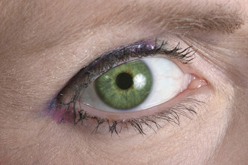 green eye looking at you