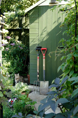 garden shed and gardening tools