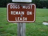 dog on leash sign poster