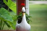 land swan poster