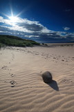 sunlit sandy beach with pebble poster