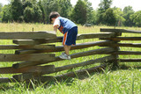 toddler on fence poster