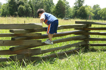 toddler on fence