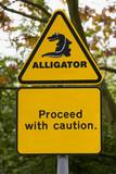 alligator!! poster