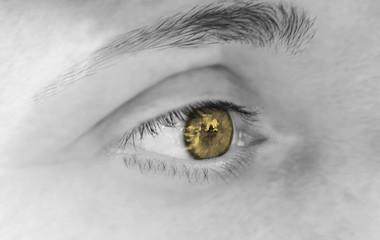 yellow eyes - bernstein - gold