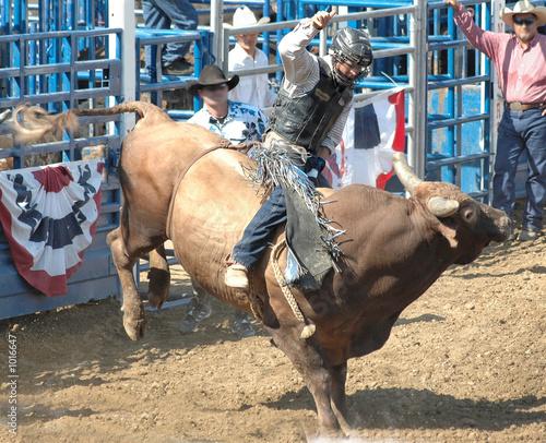 Leinwandbild Motiv bucking bull & rider