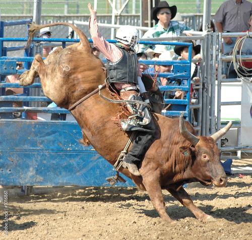 Leinwanddruck Bild bucking bull & rider