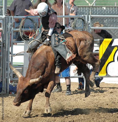 Staande foto Stierenvechten bull & cowboy rider