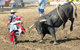 bull chasing rodeo clown