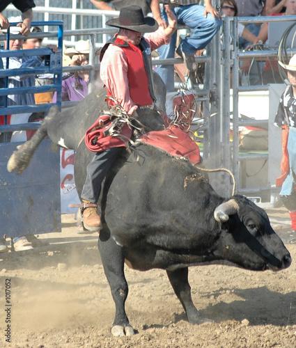 Leinwanddruck Bild bull & rider